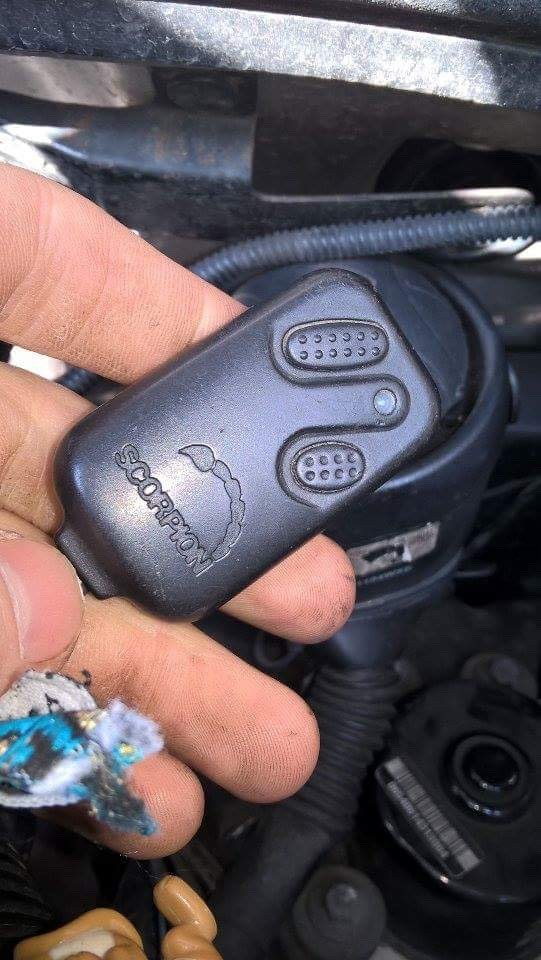 Any help with immobiliser/alarm, possibly scorpion, possibly